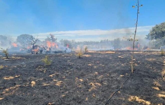 Incêndio consumiu área de pasto e mato nos Mosqueirões