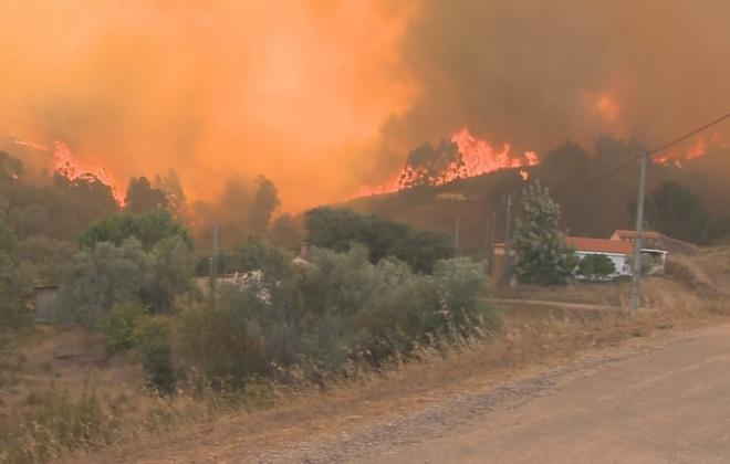 Agricultores afetados por fogos em Odemira e Monchique já podem reportar prejuízos