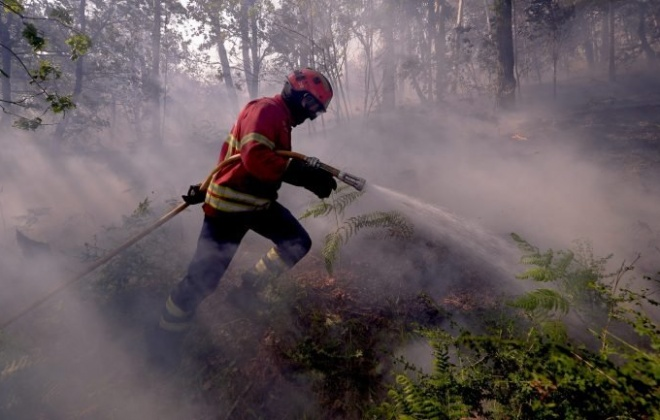 Incêndio consumiu área de mato perto da Aberta Nova em Melides
