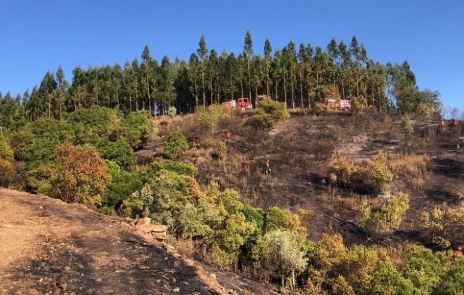 Bombeiros combateram incêndio florestal em Luzianes-Gare, Odemira